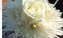 large-white-bouquet